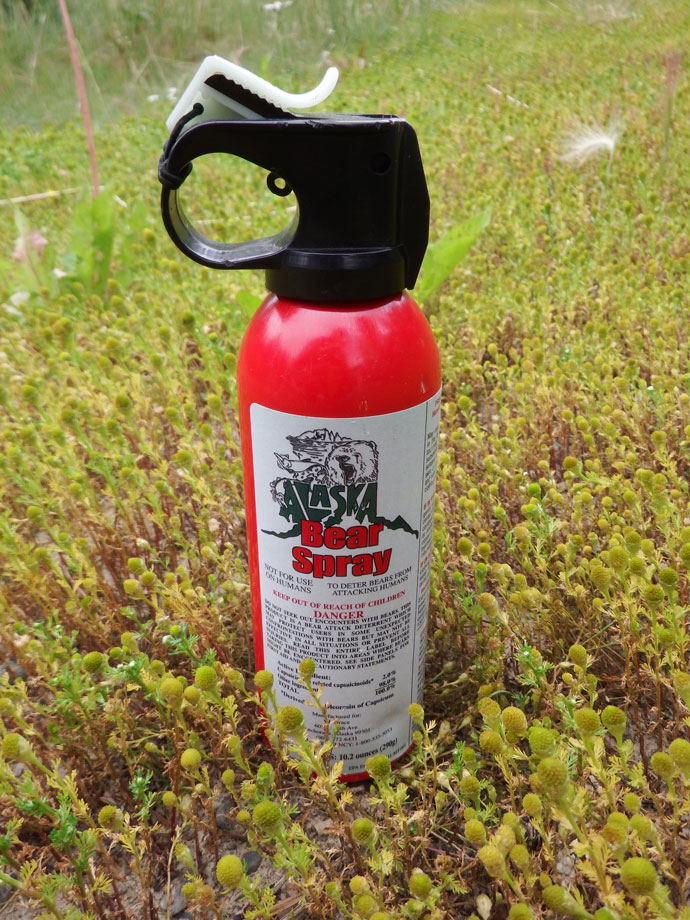 Bear Spray a.k.a My super powers